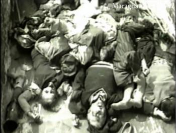 Марага жертвы