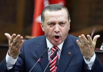 Турция выразила желание сотрудничать с США в Сирии