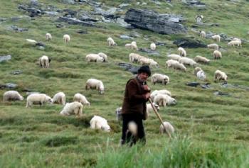 Гордость армянской разведки: как коварный азербайджанский пастух в сольфеджио 'играл'